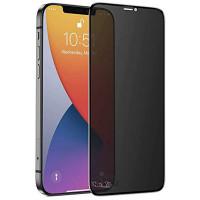 """Защитное стекло Privacy 5D (full glue) для Apple iPhone 12 mini (5.4"""")"""