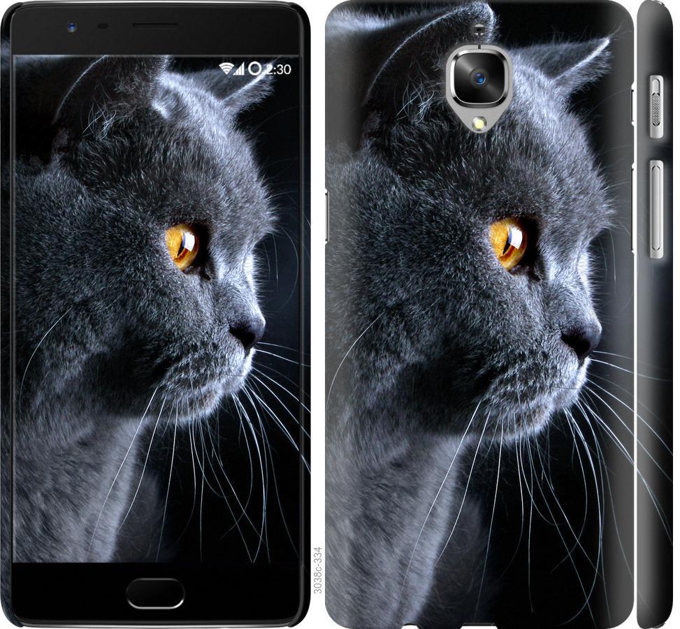 Чехол на OnePlus 3T Красивый кот